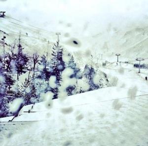 nieve 4215